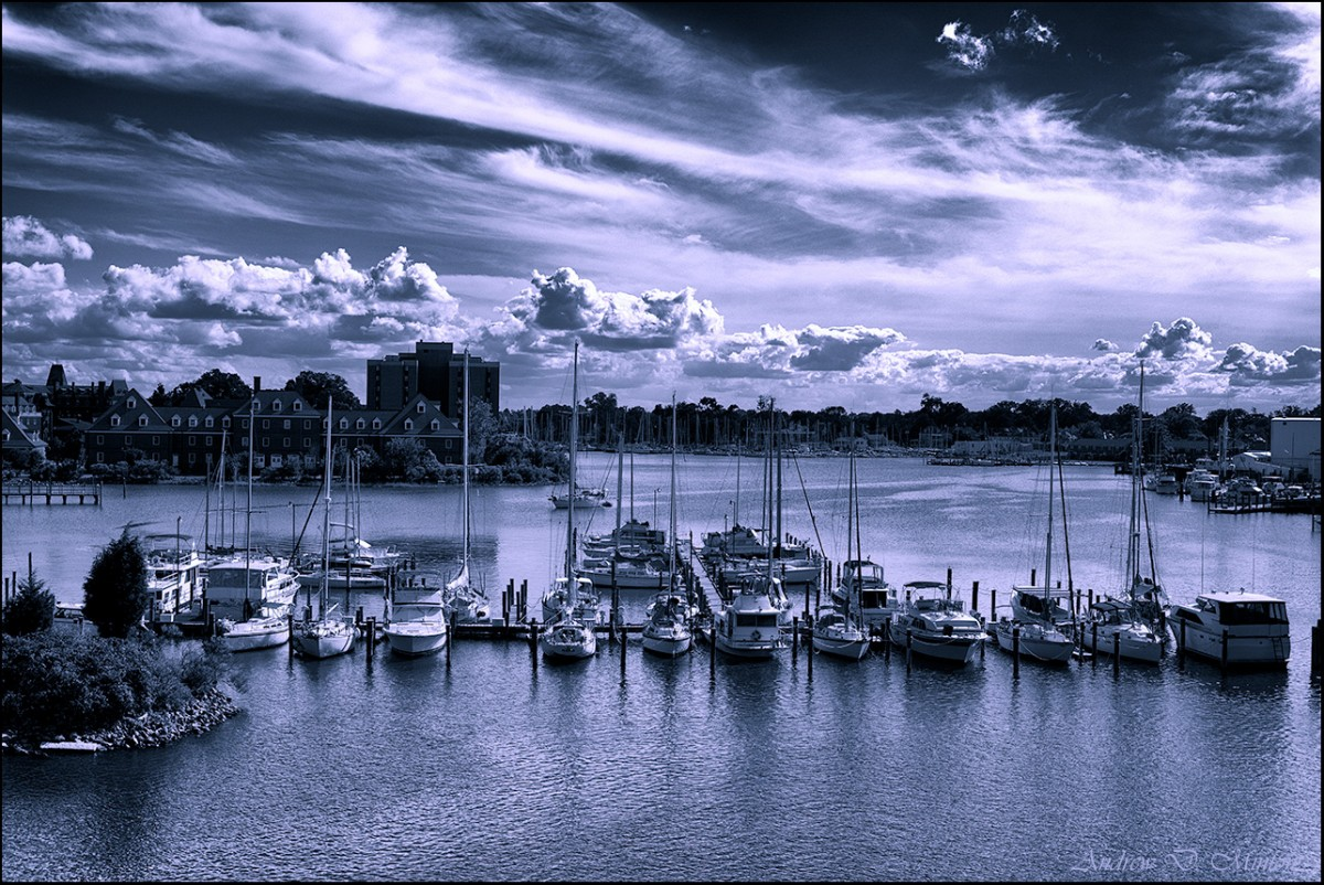 Hampton Boat Harbor - Hampton VA